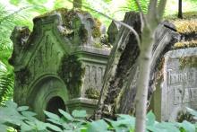 Smolensky Orthodox Cemetery SPB (78)